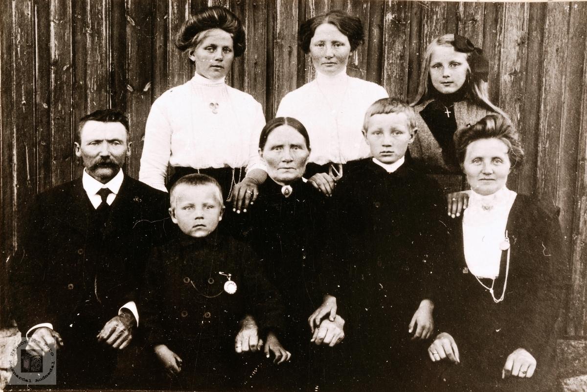 Portrett av familien Torvald Pedersen Viblemo. Konsmo.