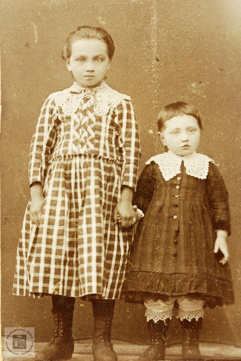 Portrett av søstrene Torborg og Johanna Viblemo. Konsmo.