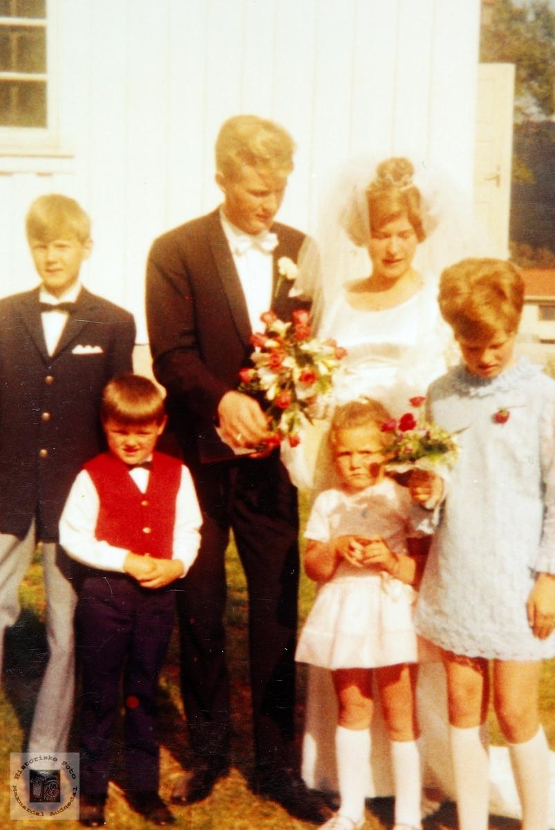 Bryllupsfest med brudeparet Birkestøl.