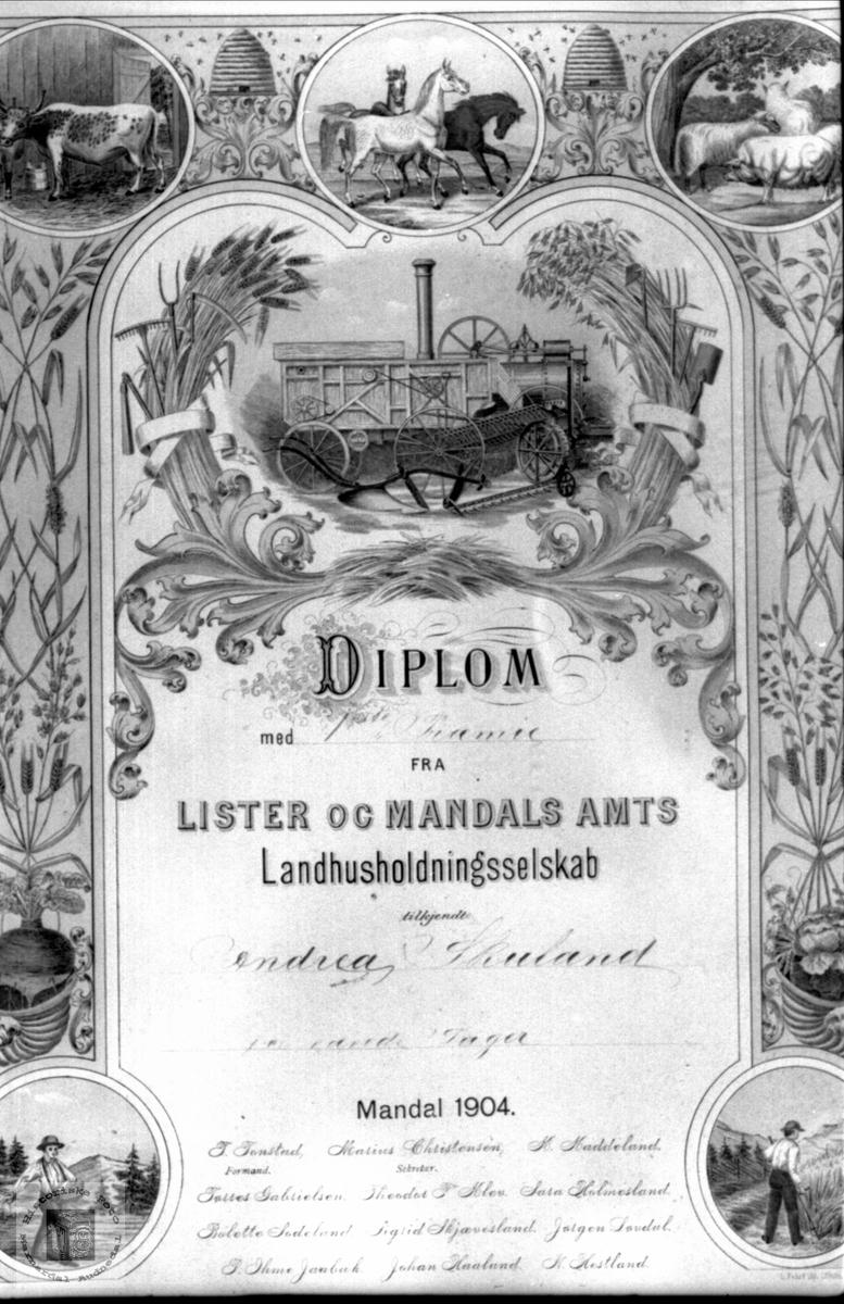 Diplom tildelt Andrea Skuland.