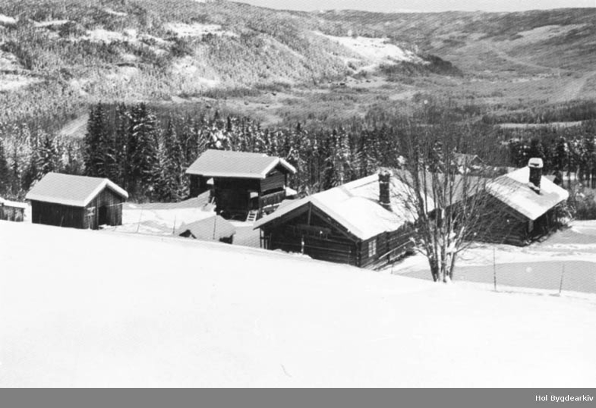 Gardsbruk, Røo, Hallingstugu, vinter, stolphus, loft, Moen,