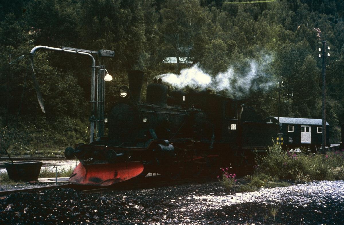 Damplok 21b nr. 225 ved vannstenderen på Rødberg stasjon .