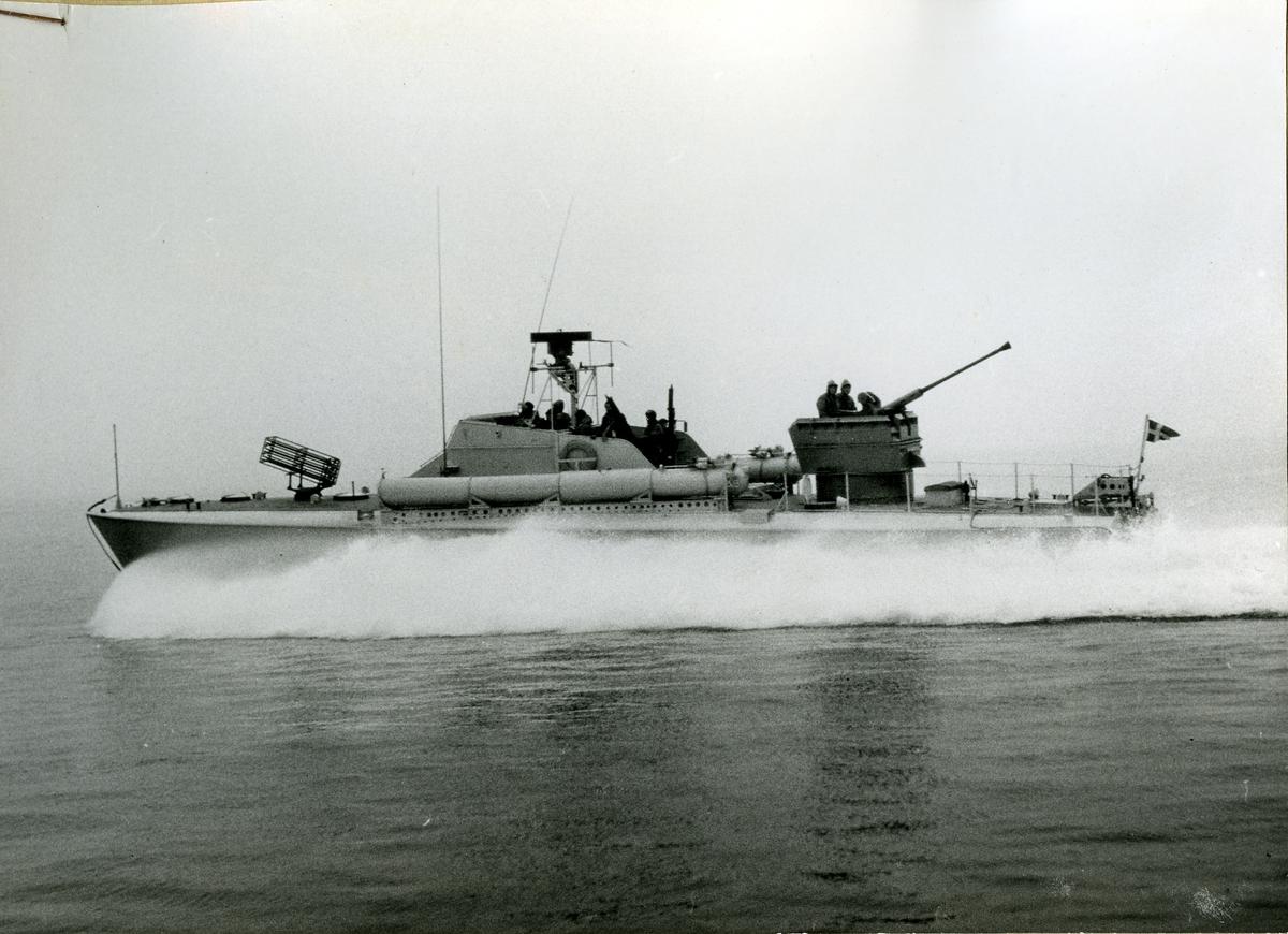 T 42 (1956)