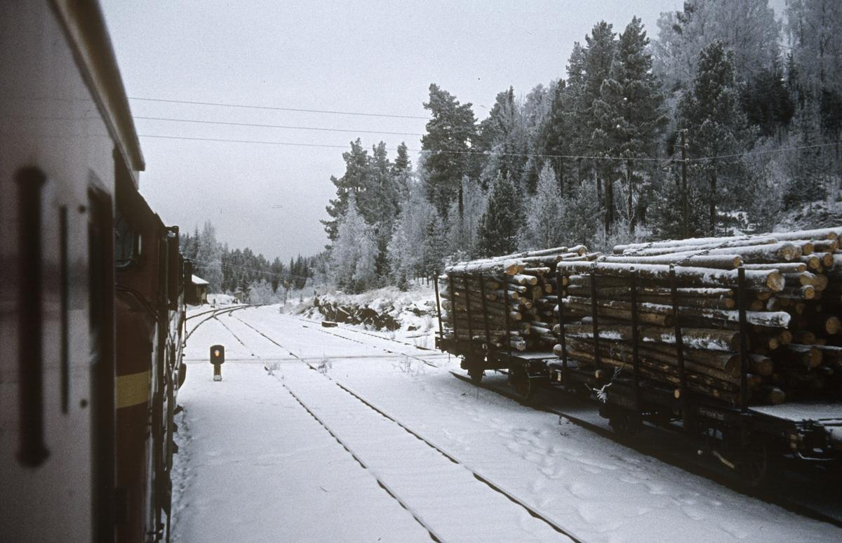 Tog 281 fra Oslo til Fagernes på Skrukli stasjon. Lastede tømmervogner egnet for Valdresbanens lave aksellast står på sidesporet.