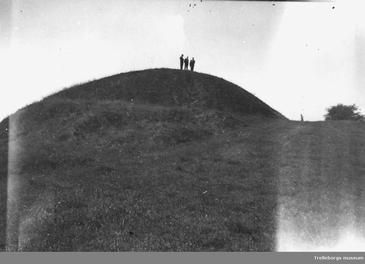 Vemmenhögs härad. Ort ej angiven. Foto P.L Nilsson 9/8 1953.