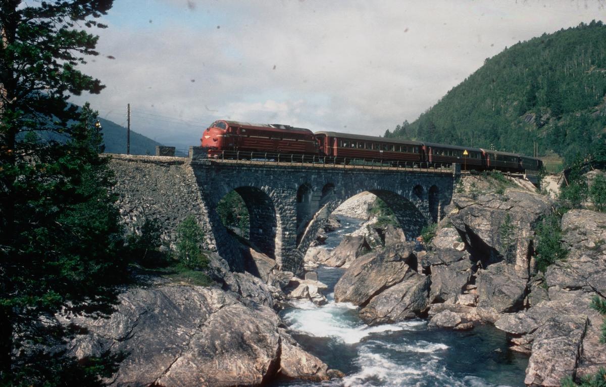 Dagtoget Åndalsnes - Oslo Ø, tog 352, kjører over Stugguflåten bru.