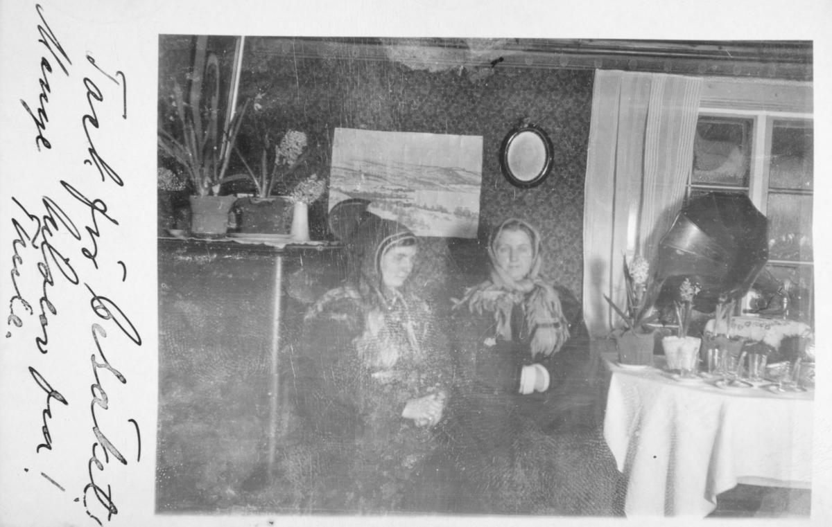 Et flott interiørbilde fra Inari. To kvinner sitter rund kaffebordet i stua. Bak bordet ses vindusruter dekket med tykt lag is. På bordet hyasinter og andre potteplanter, samt en grammofon.  Kvinnen sittende til venstre er Gjertrud Gunnari og til høyre Magdalena Evanger, begge fra Bugøynes. Turen til Inari fra Bugøynes blev foretatt om vinteren med rein og pulk.