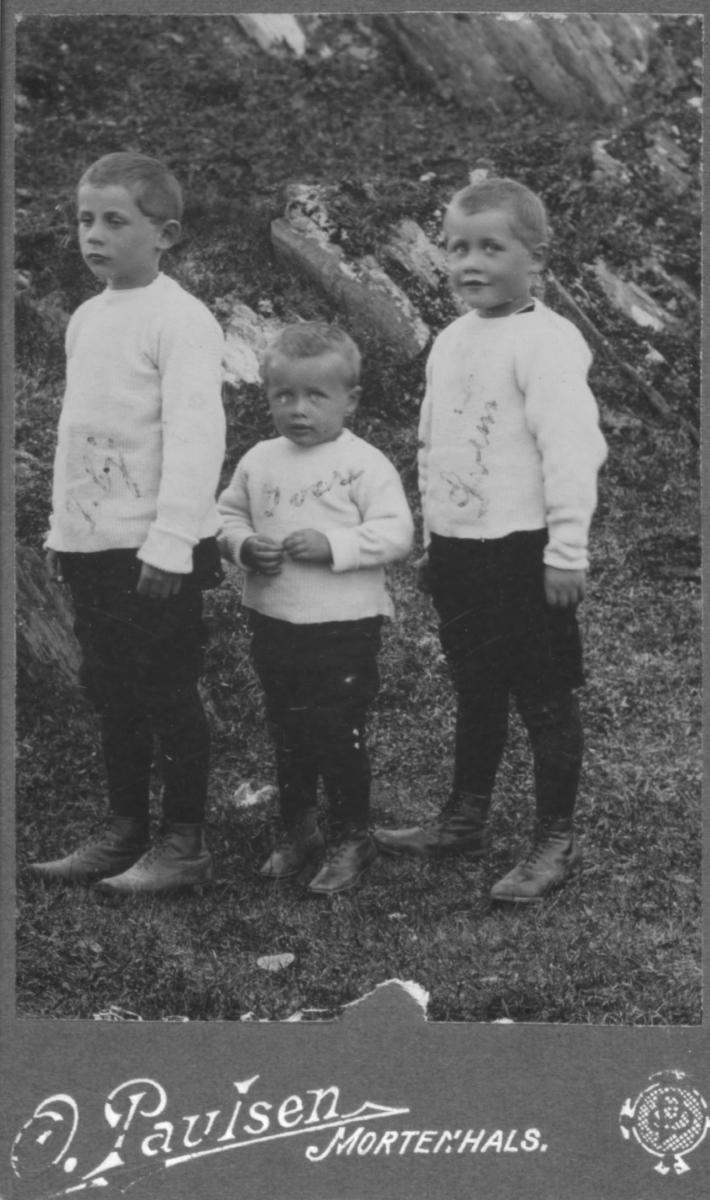 Portrett av tre brødre, sønner av Ida og Fredrik Forberg. Guttenes navn står utydelig skrevet på bildet. Fra venstre sannsynligvis: Torbjørn, Svein, Aslak Juel
