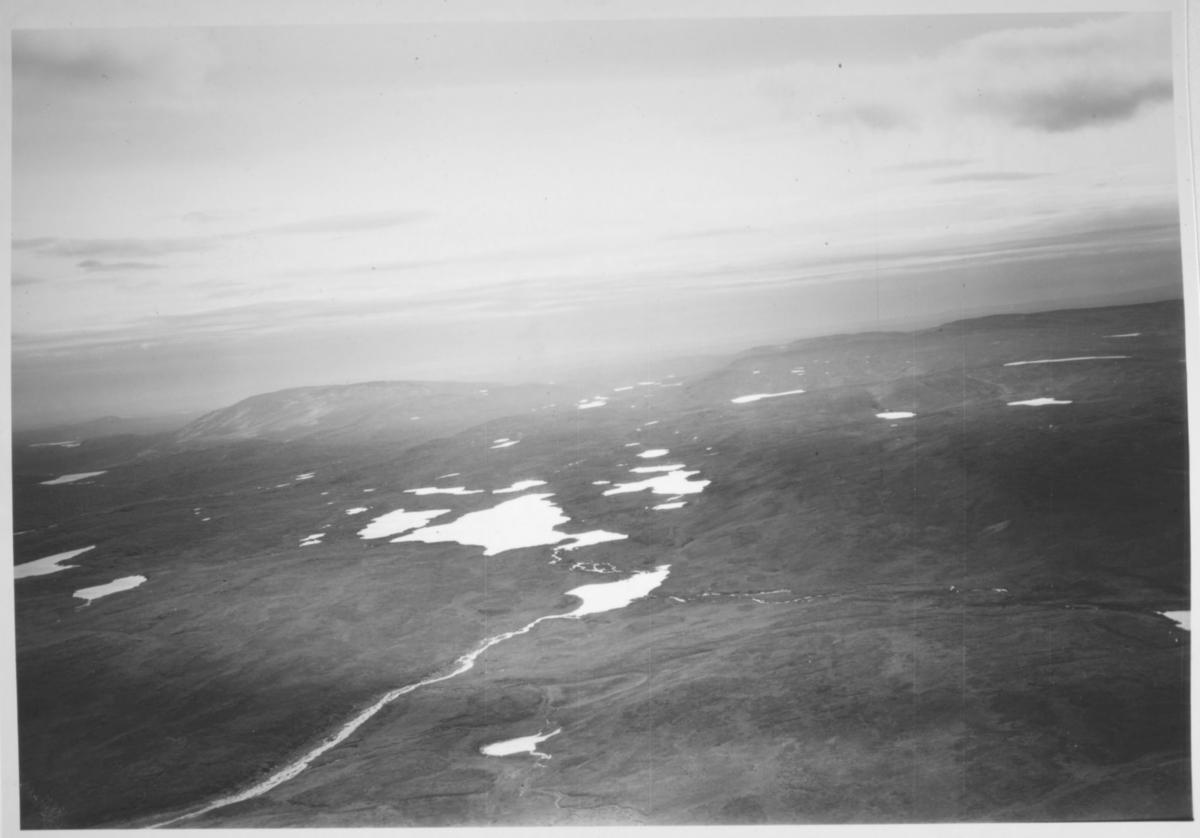 flyfoto vest for Nesvann