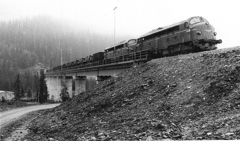 Et av de første malmtogene ut fra Rana Gruber sitt lasteanlegg på Ørtfjell, Dunderlandsdalen. Togvekten her er ca. 3000 tonn.