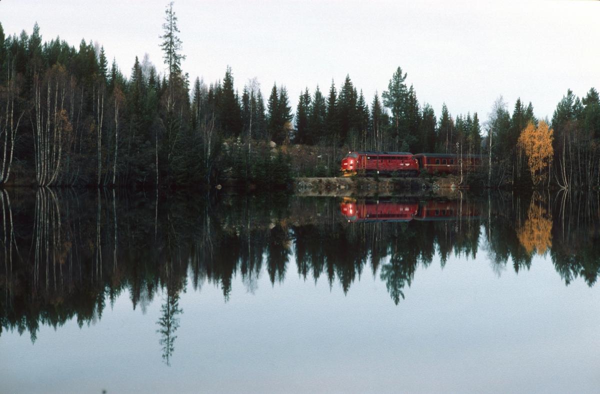 Persontog fra Fagernes til Oslo S på vei mot Trevatn stasjon.