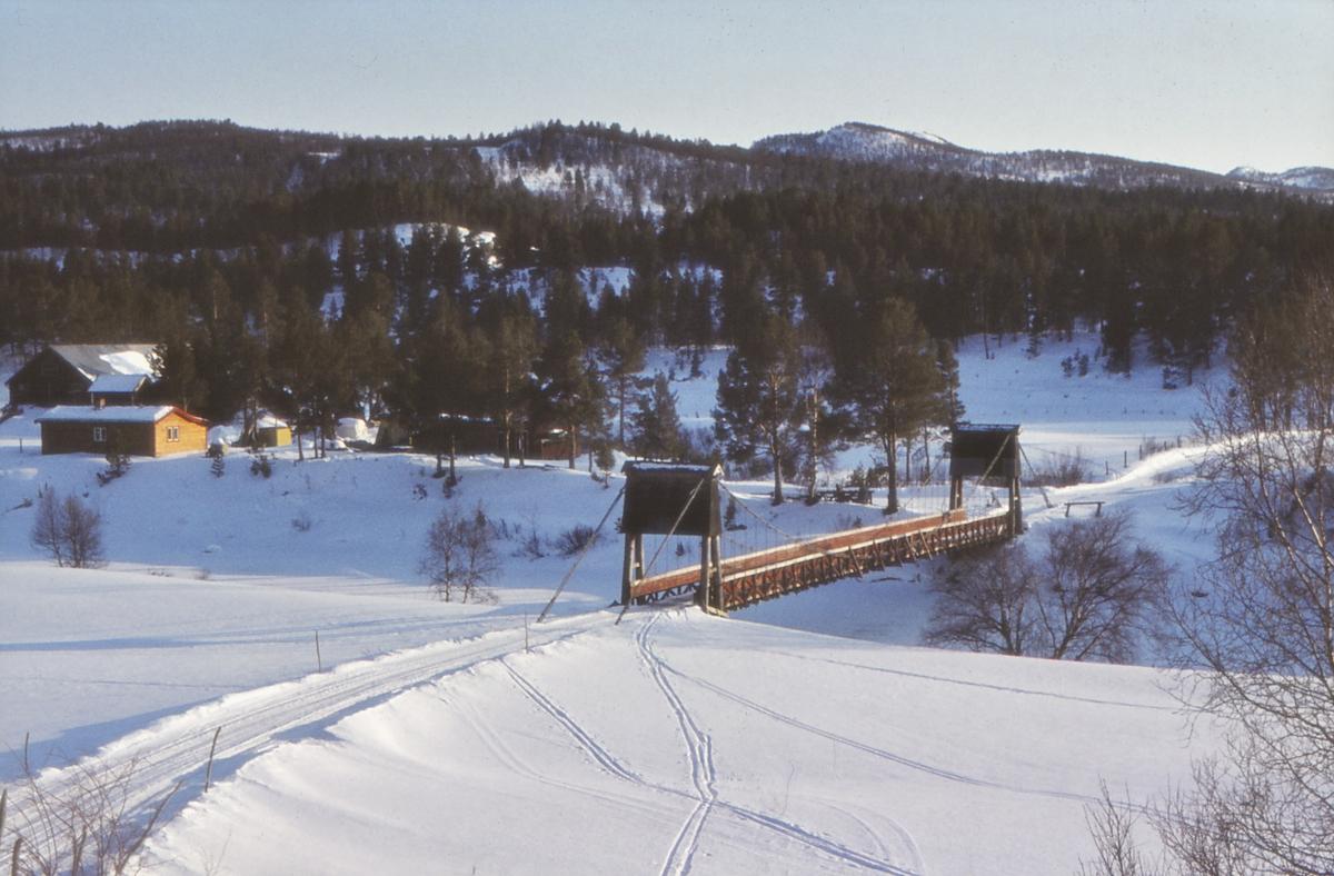 Motiv fra Vangrøftdalen, Dalsbygda, Os i Østerdalen.