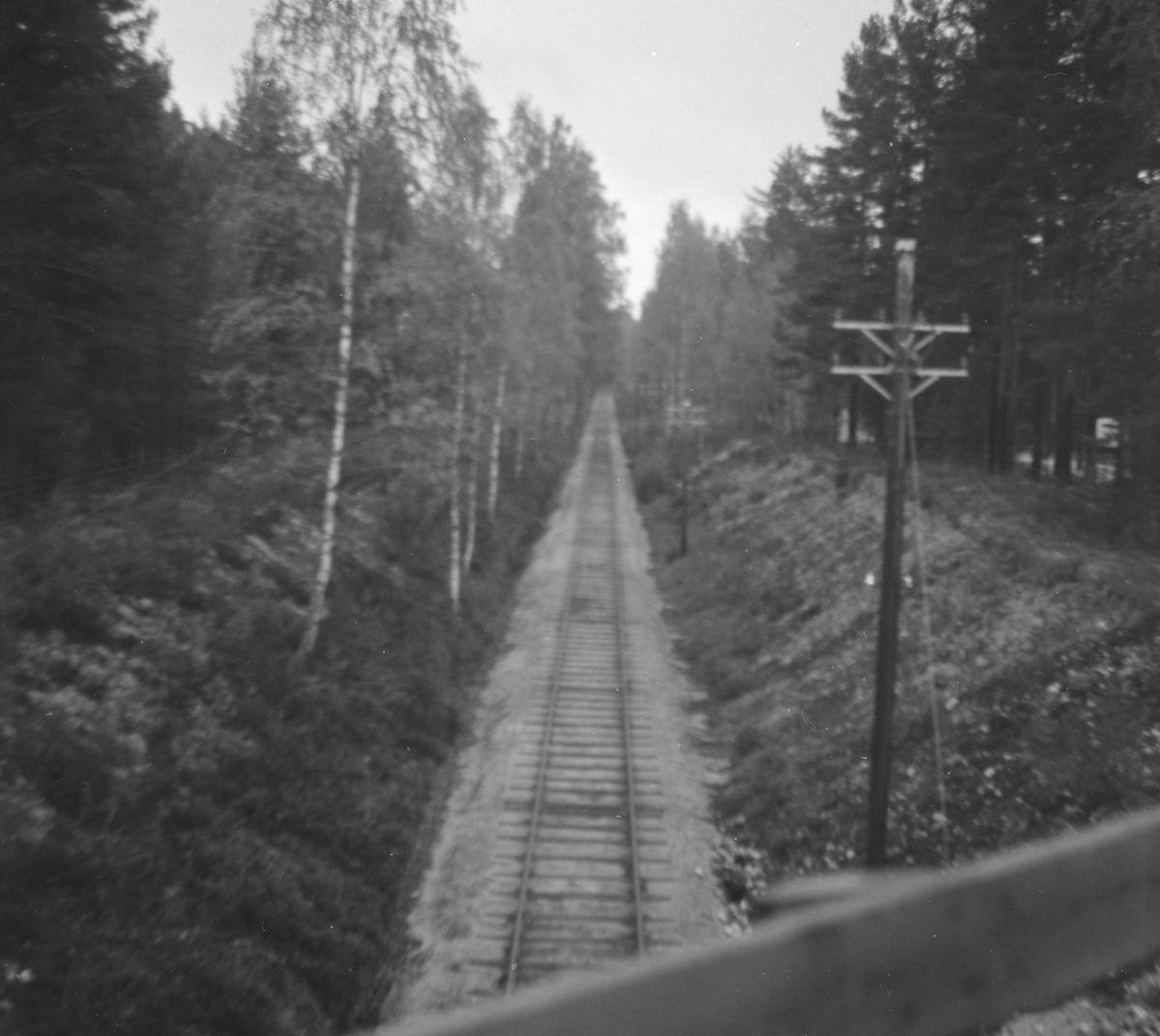 Langs Krøderbanen mellom Kløftefoss og Krøderen.