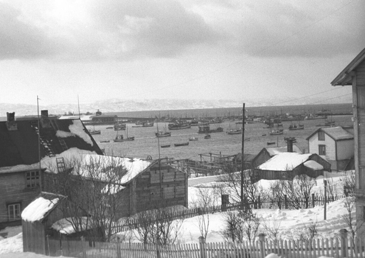 Lodde-flåten i Vadsø havn sett fra Hauges hus i Nyborgveien. Det store bygget til venstre på bildet er Ingebrigtsen-gården. Kaia omtrent midt på bildet er Bekola-kaia.