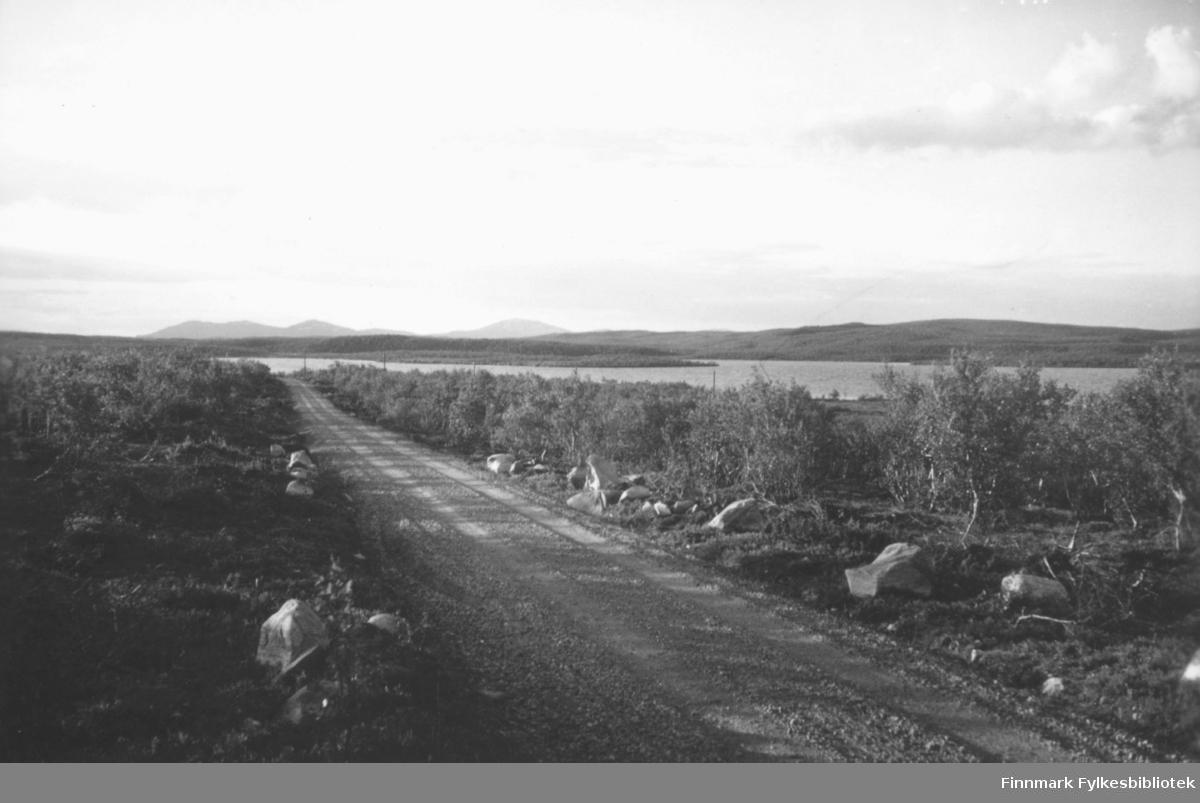 'Finnmarksvidda mell. Karasjok og Skoganvarre' B 7809