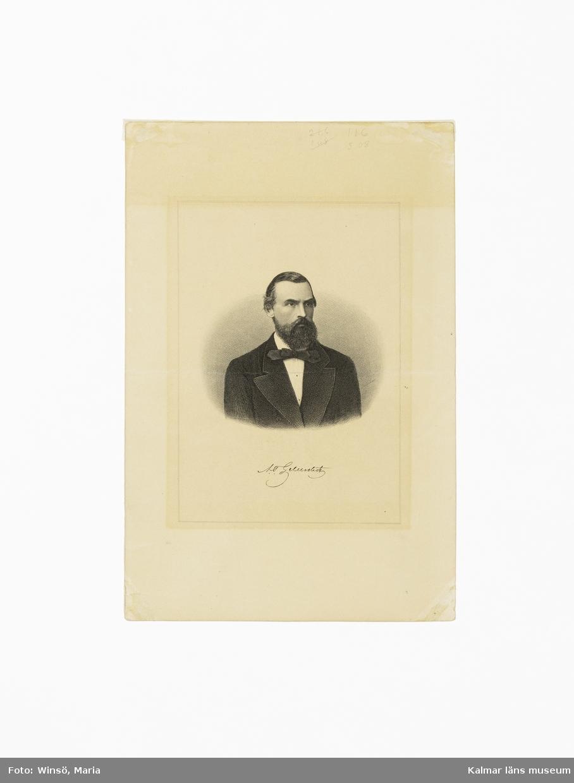 Motivet föreställer en man, Albert Theodor Gellerstedt, en face.