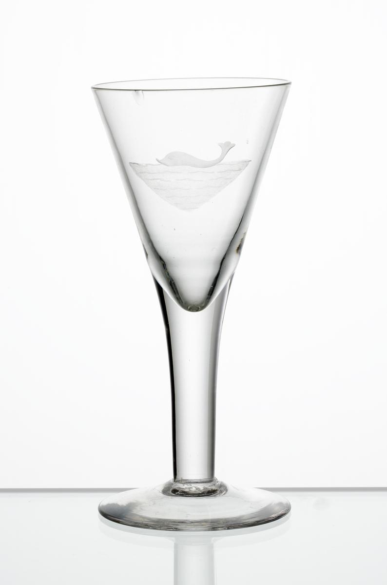 Brännvinsglas, konande kupa. Graverad delfin (?) i vatten på kupan.