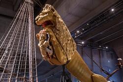 """Utställning på Vasamuseet """"Vasa på nära håll"""""""