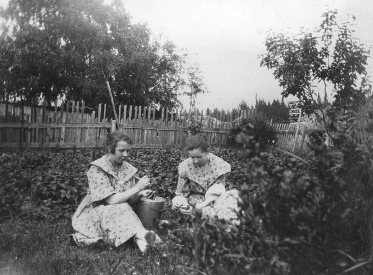 To ukjente plukker jordbær?