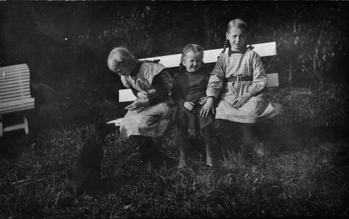 Tre små piker, hund, benk, have
