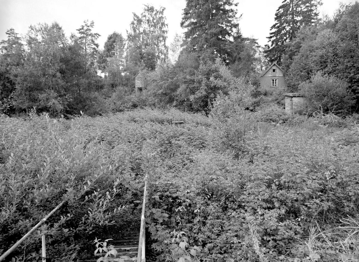Noe av bro, hytte i skog.