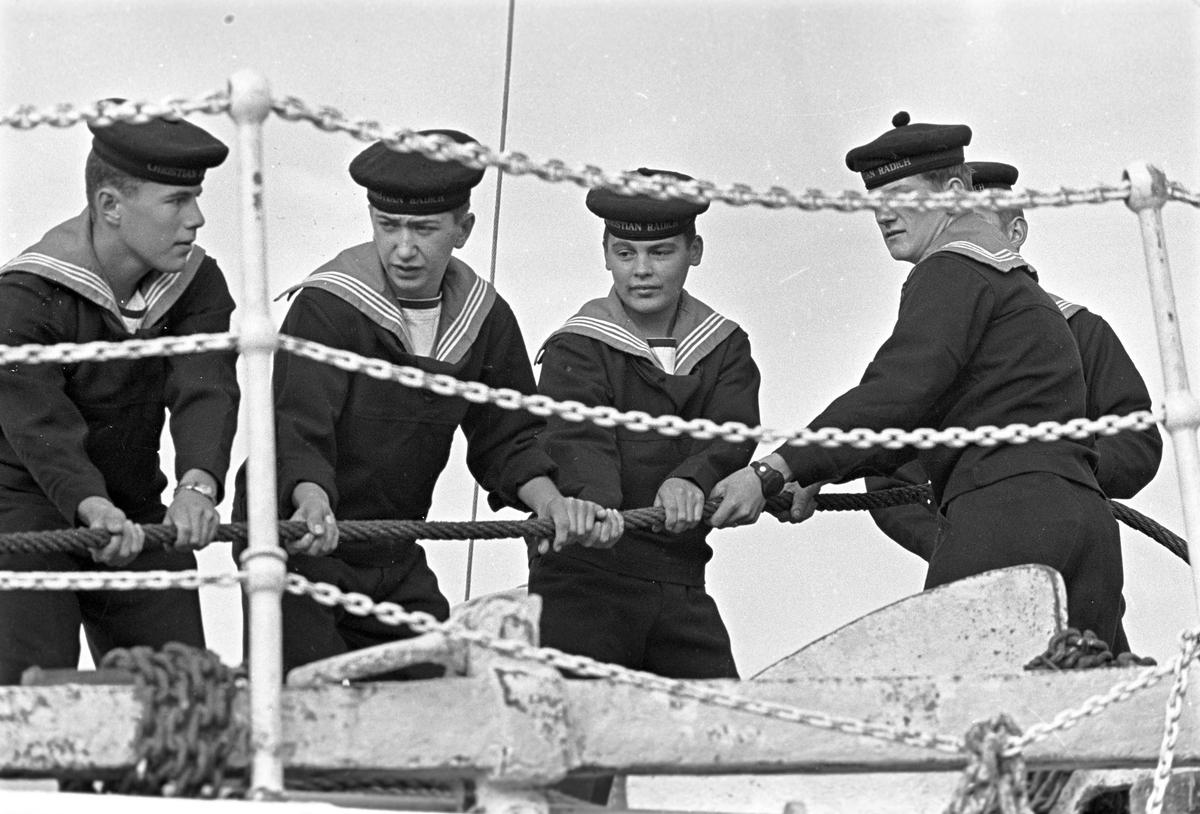 """Serie. Mannskap ombord på skoleskipet """"Christian Radich"""". Fotografert okt. 1964."""