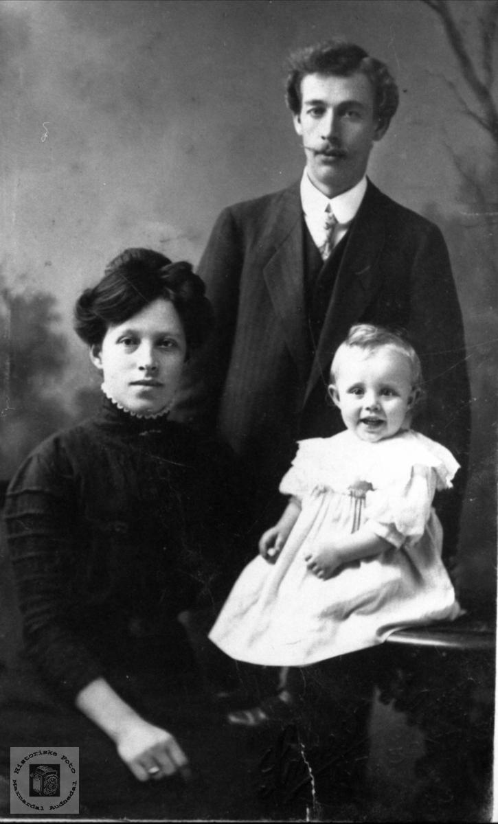 Familiegruppe Elg med etterslekt på Øyslebø.