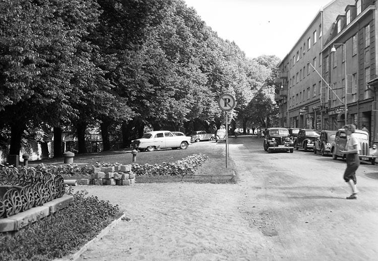 """Enligt notering: """"Parkering på planteringarna vid Södra Hamngatan U-a 16-7-55 lördag""""."""