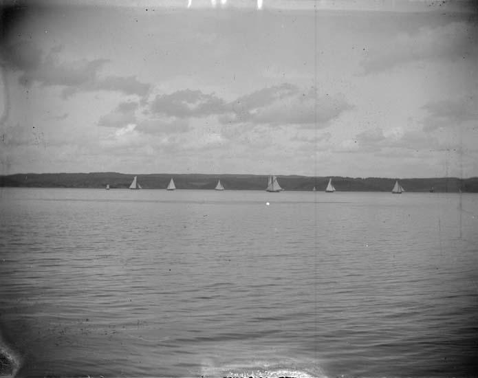 """Enligt text som medföljde bilden: """"Gustafsberg. Kappseglingen 1897."""""""