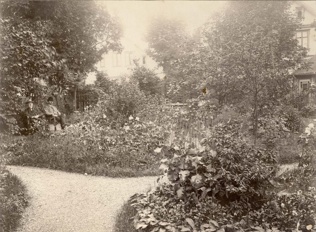 Kemner T. Manger og sønnen Thomas? i hagen på eiendommen sin i Haraldsgt. 131.  I bakgrunnen Sørhauggt. 133.  Fotoet er tatt fra Haraldsgt. og inn i gården.  Hagen har grusganger, mange planter og trær.  Her ligger i dag klesforretning Windsor