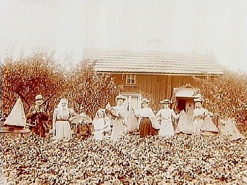 Bostadshus, 8 personer bland bikupor.Anders Persson