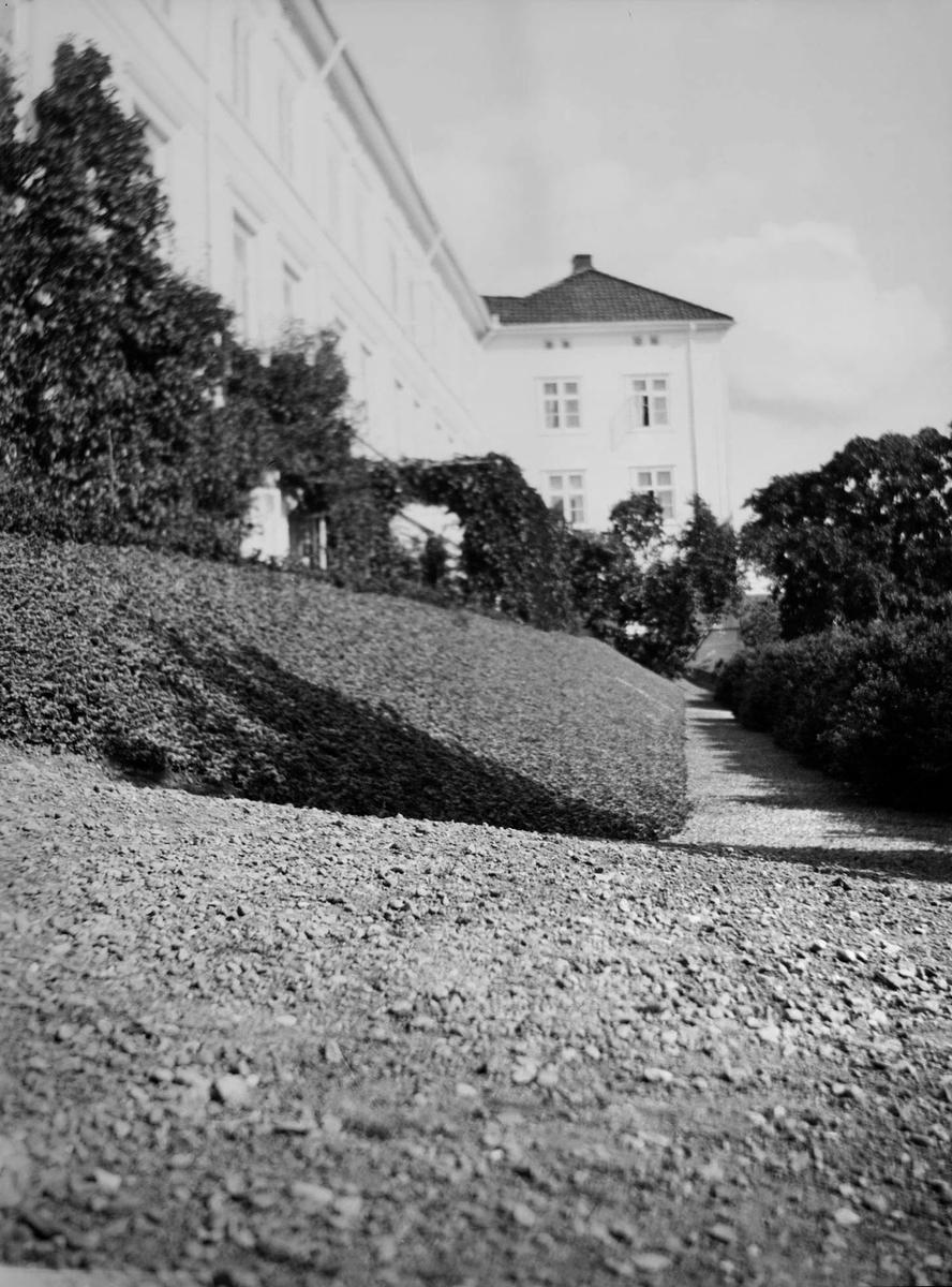 Grusgang med lave hekker og beplantning parallelt med langsiden av hovedhuset på Linderud gård. Her sees også husfasaden og hagetrær.