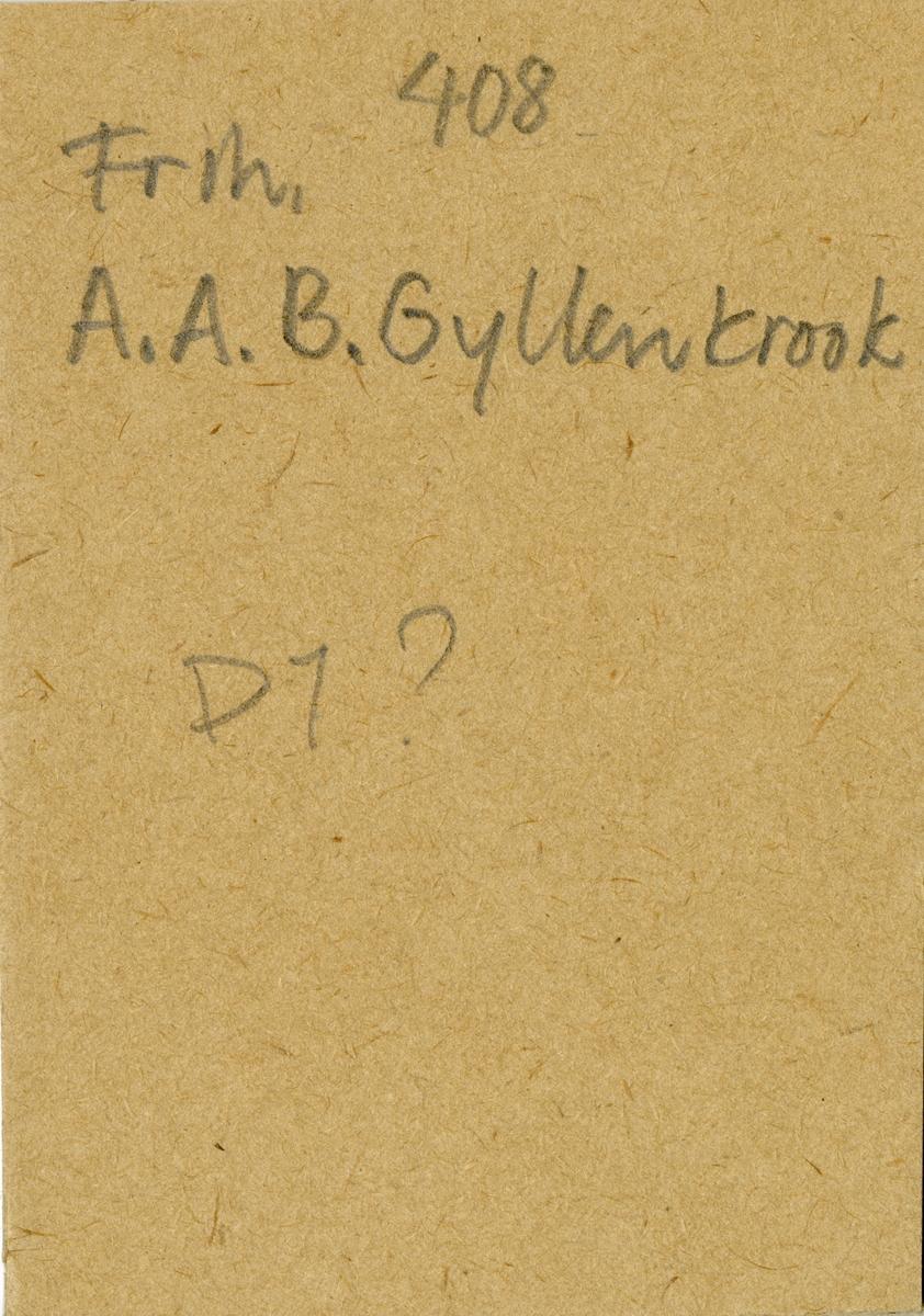 Porträtt av Axel Adolf Bror Gyllenkrook, officer vid Andra livgardet.