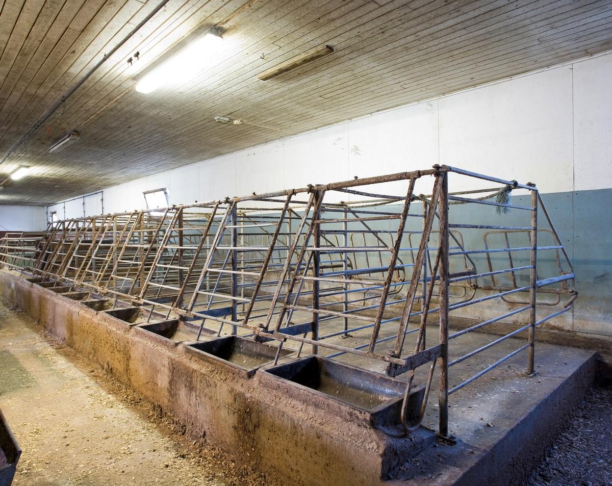 Grisebinger. Brukt til å fiksere griser i griseproduksjonen. I dag er grisebinger av denne typen forbudt iht. dyrevernlovgivningen.