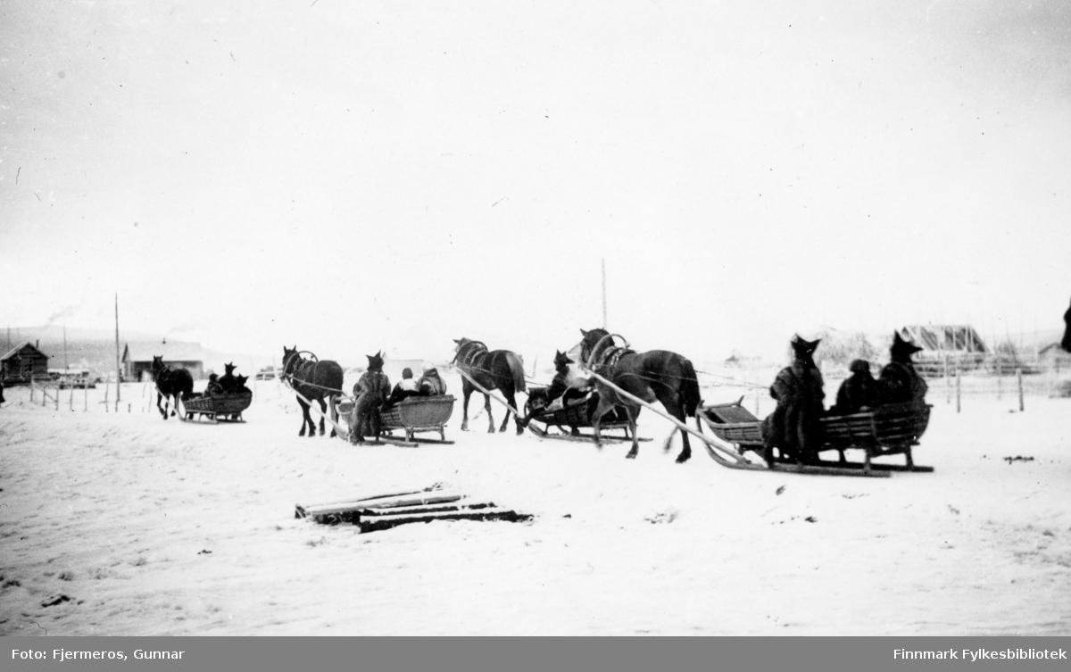 Fotografi av et samebryllup der følget er på tur bort med hestesleder. Personer og sted er ukjent, men bildet er tatt i november 1946.