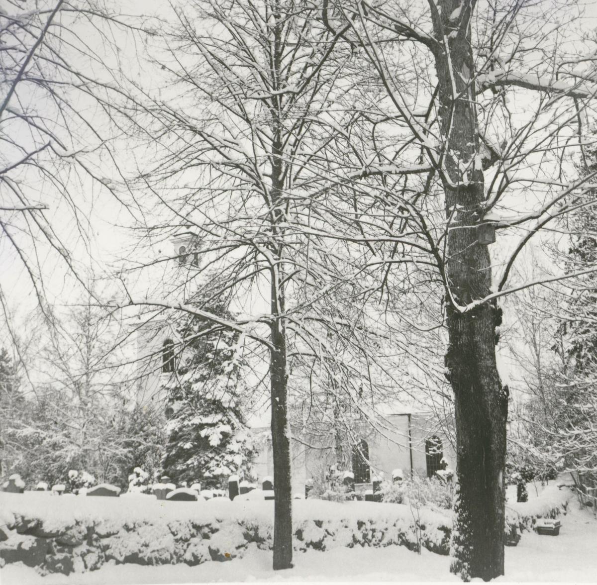 Foto från sydöstra sidan, taget före avverkningen i mars 1969.