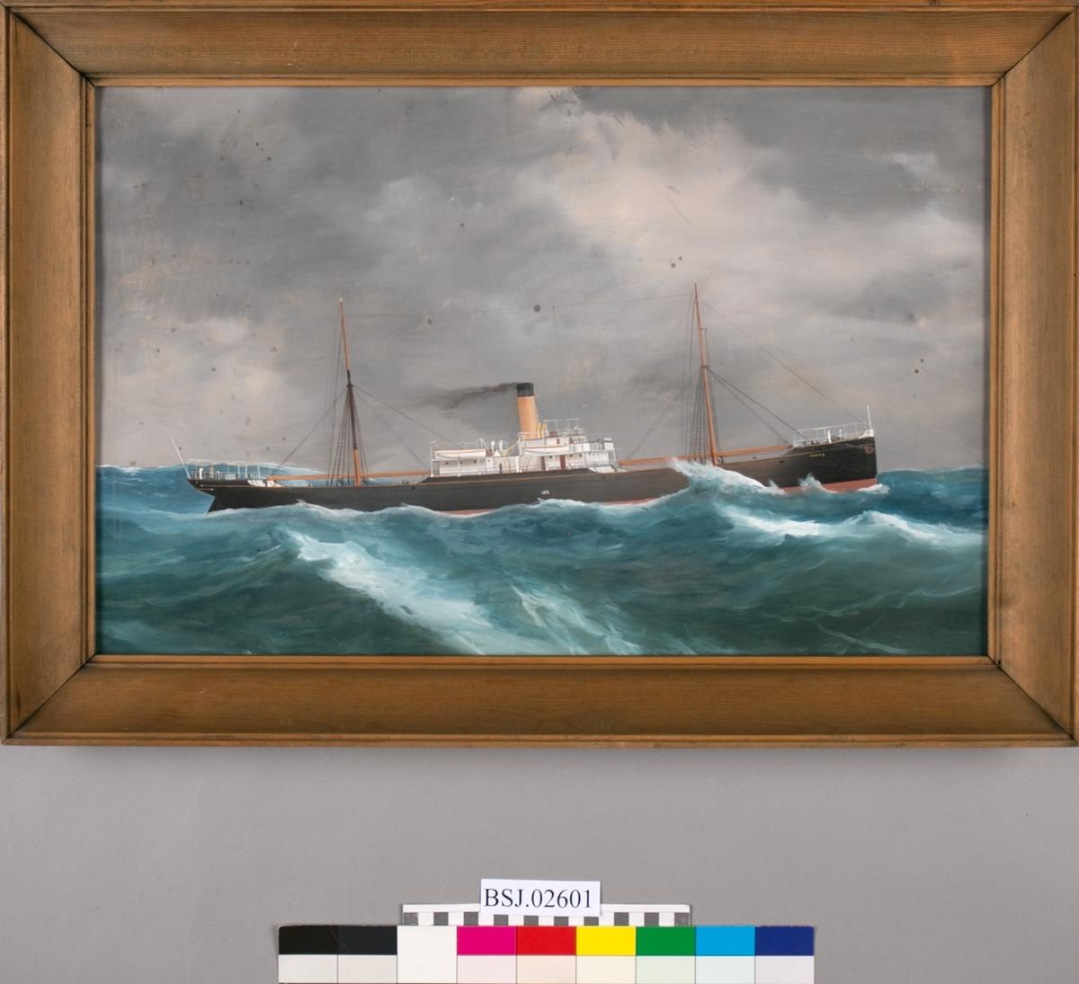 Skipsportrett av DS SANNA under fart i høy sjø. Fører ingen vimpler eller flagg.