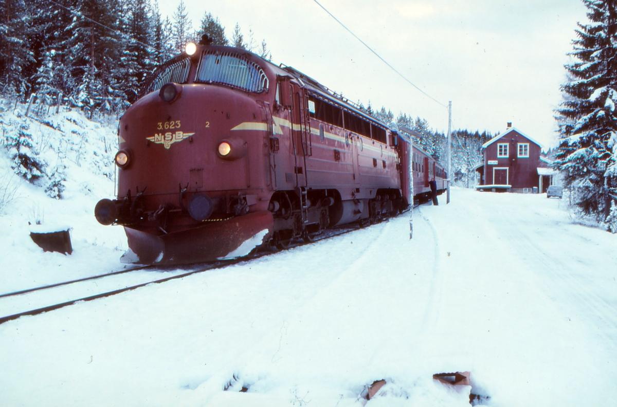 NSB dieselelektrisk lokomotiv Di 3 623 på Trevatn stasjon med persontog Fagernes - Oslo S.