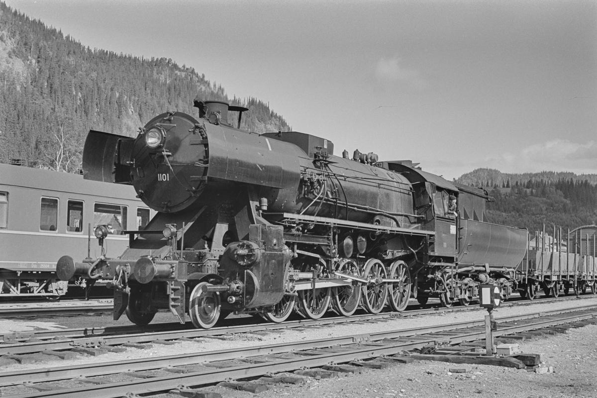 Godstog fra Trondheim til Rørosbanen på Støren stasjon. Toget trekkes av damplokomotiv type 63a nr. 1101.