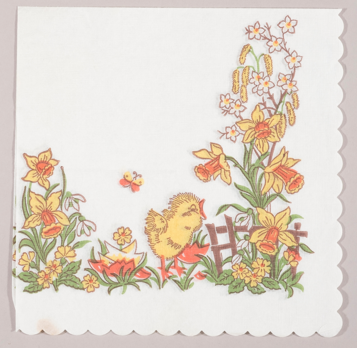 En kylling står ved siden av skallet av et egg i en hage med gjerde og påskeliljer, snøklokker, grene med rakler og hvite og gule blomster.