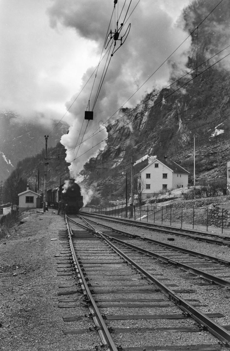 Godstog retning Oslo, tog 5516, på Dale stasjon. Toget trekkes av damplokomotiv type 31b nr. 426.