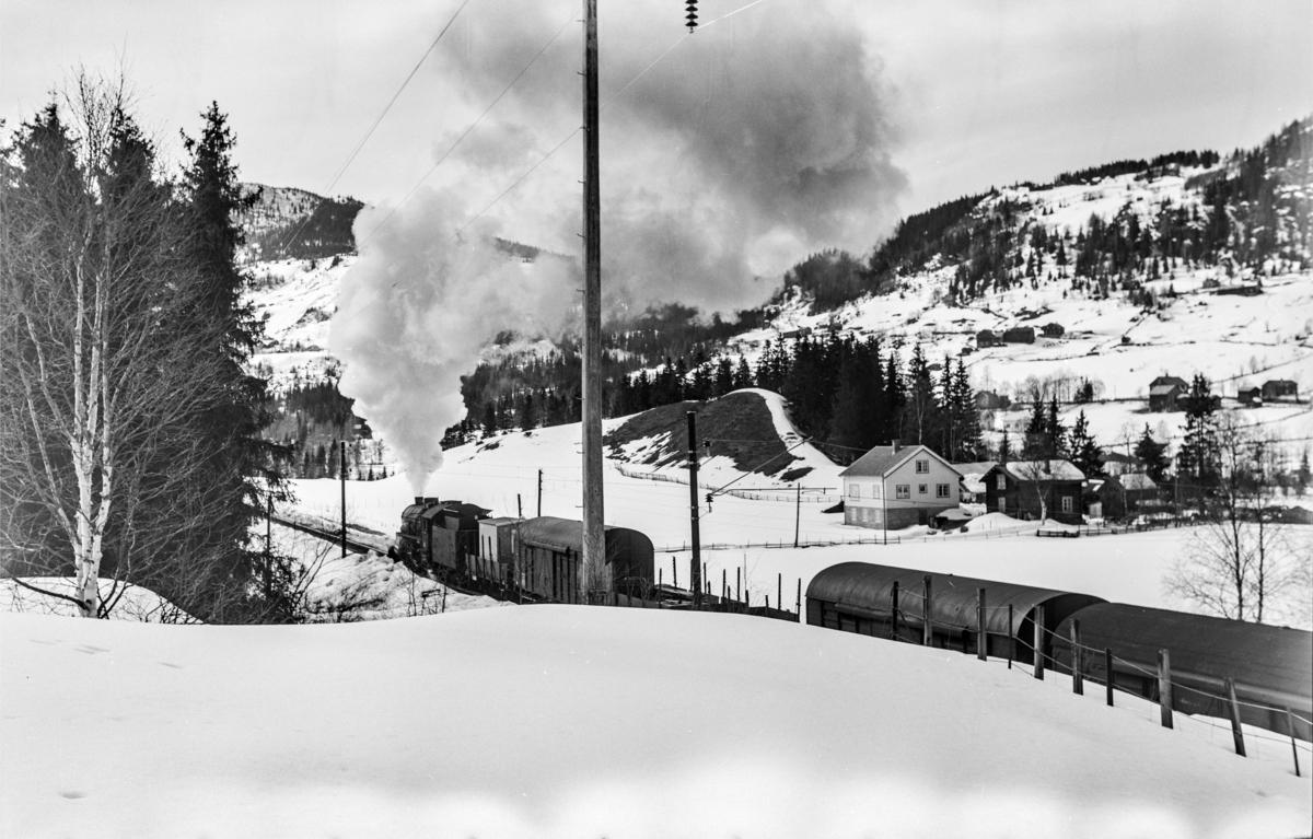 Underveisgodstoget fra Hønefoss til Voss, tog 5531, kjører ut fra Ål stasjon. Toget trekkes av damplokomotiv type 31b nr. 419.