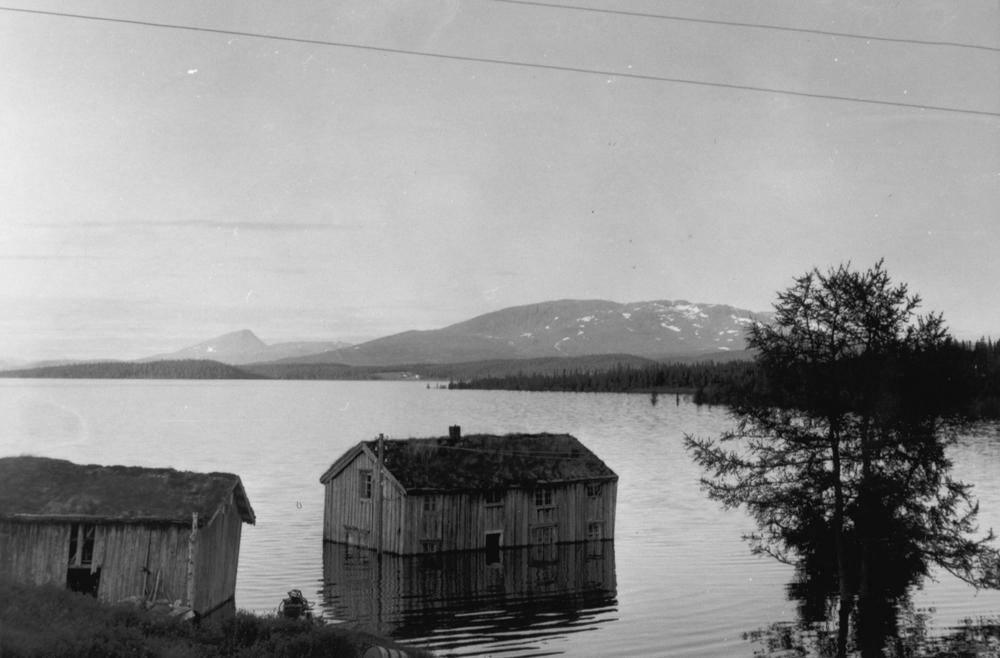 Under oppdemminga av Røssvatnet, gård i Sjåvika.