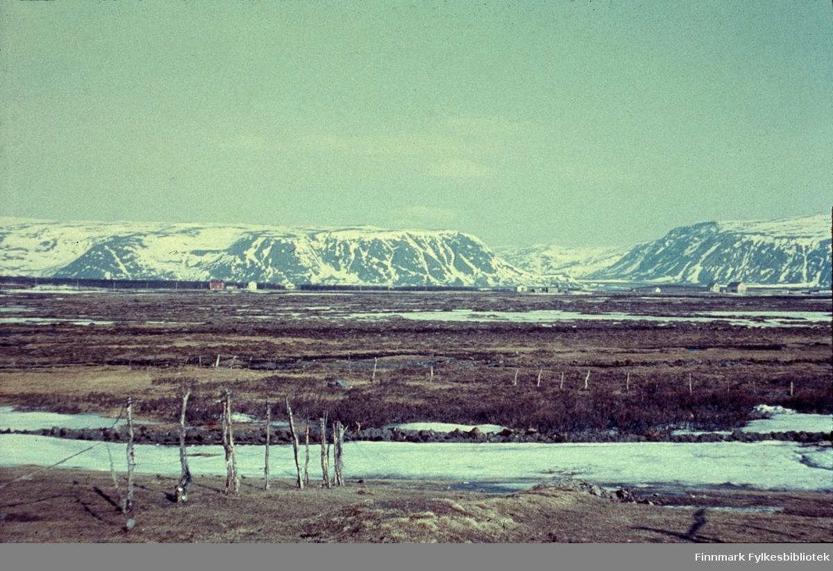 """Veidnes, påsken 1960. Stormyra i forgrunnen. Veidnes er ei bygd i Lebesby kommune i Finnmark. Det er det eneste bebodde stedet på vestsiden av Laksefjorden, og er trolig det stedet i Norge som har lengst vei til kommunesenteret, ca. 265 km til Kjøllefjord. (det er 51 km med båt). Veidnes har ca. 50 innbyggere. Næringslivet i bygden består av fiske og hold av storfe og sau. Naturen er en del av et våtmarksområde med bjørkeskog, myrer, og spesielt rikt fugleliv.  Fotografen Richard Bergh har også skrevet et hefte som heter: """"Når vi sitt' her og prate"""". Folk i Laksefjord forteller. Norsk Folkeminnelags skrifter nr. 122. H. Aschehoug & Co. (W. Nygaard). Oslo 1980. ISBN 82-03-10187-9"""