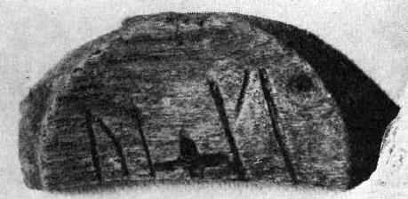 Del av planad botten till svarvat träkärl. Inristade runor: UI och KI 2 delar klistrad