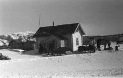 Tana, april 1952