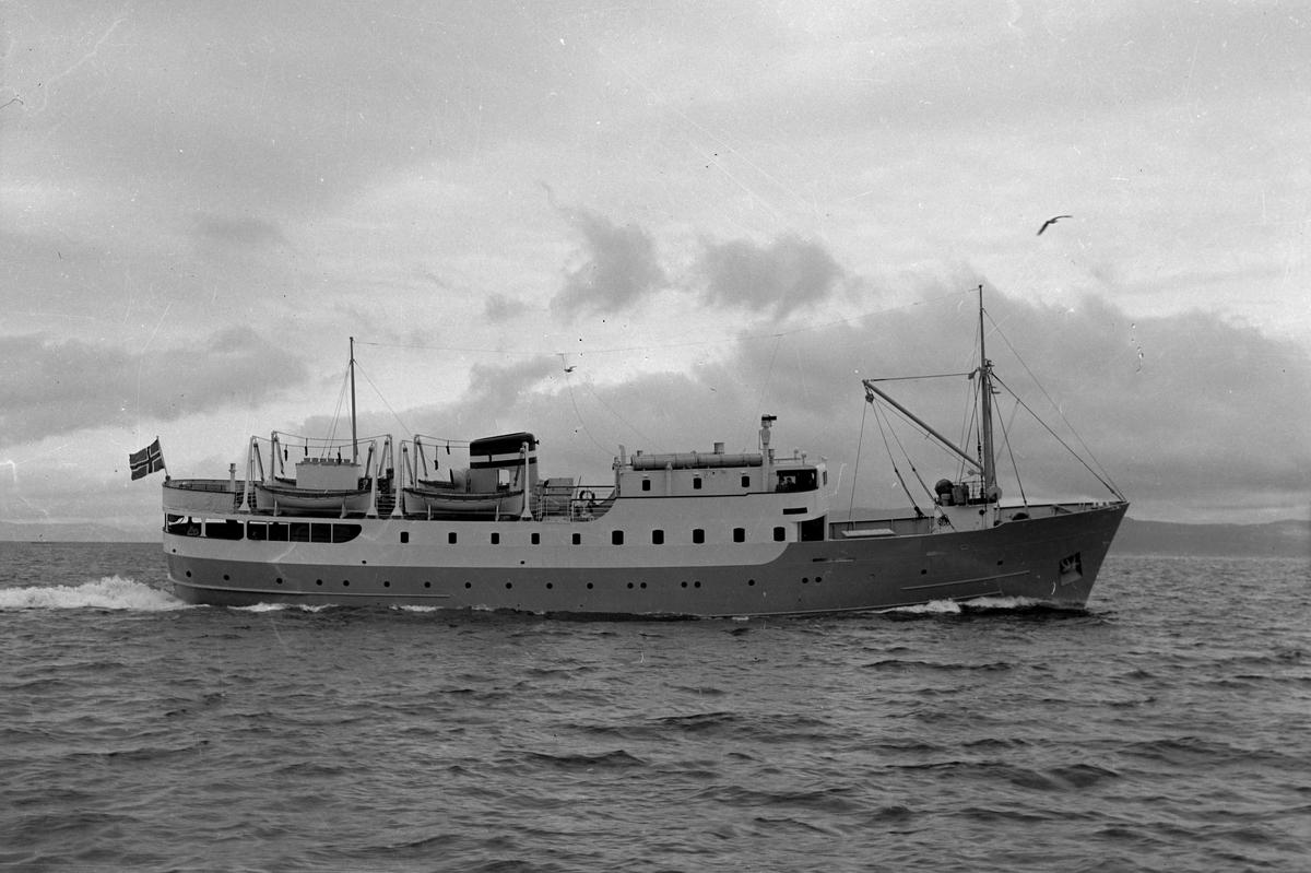 M/S Agdenes på Trondheimsfjorden