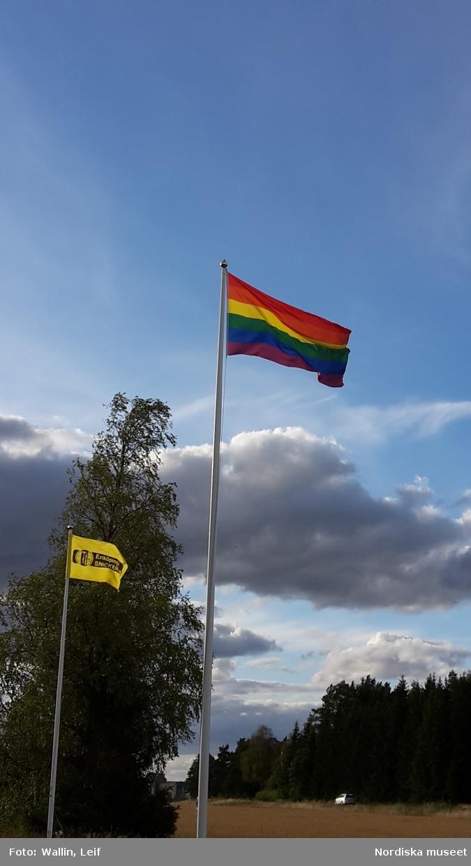 Prideflaggan (regnbågsflagga) vajar i vinden  utanför Enköpings snickeri,