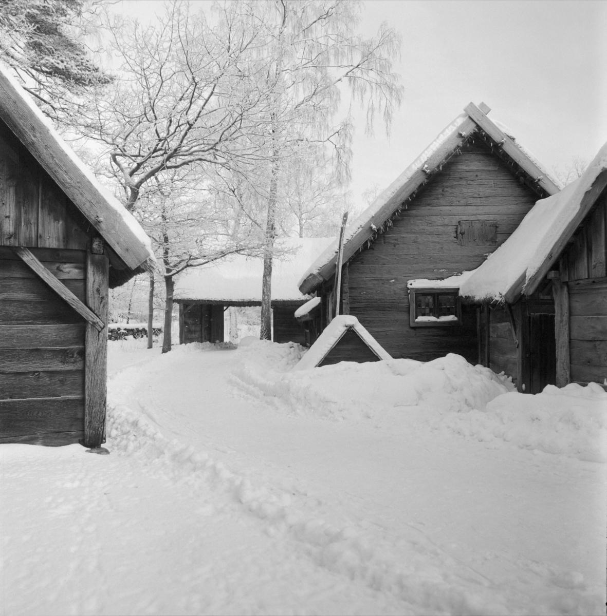 Vinterbilder på gårdar, ute och inne. Skansen.