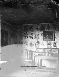 Linnés Hammarby, Uppland 1878